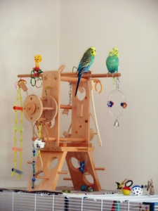 Bezukhov & Cagney on the playgym