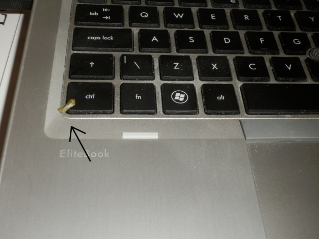 Poop on laptop