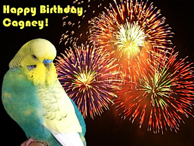 Happy Birthday, Cagney!