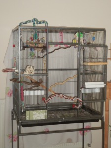 Liberta Oregon bird cage