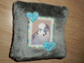 Completed pillow (back)