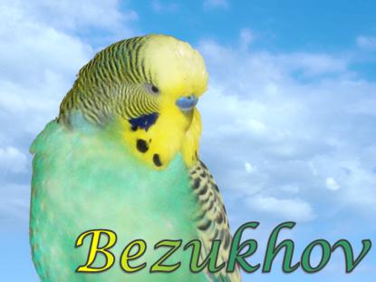 RIP-rainbow-Bezukhov-page